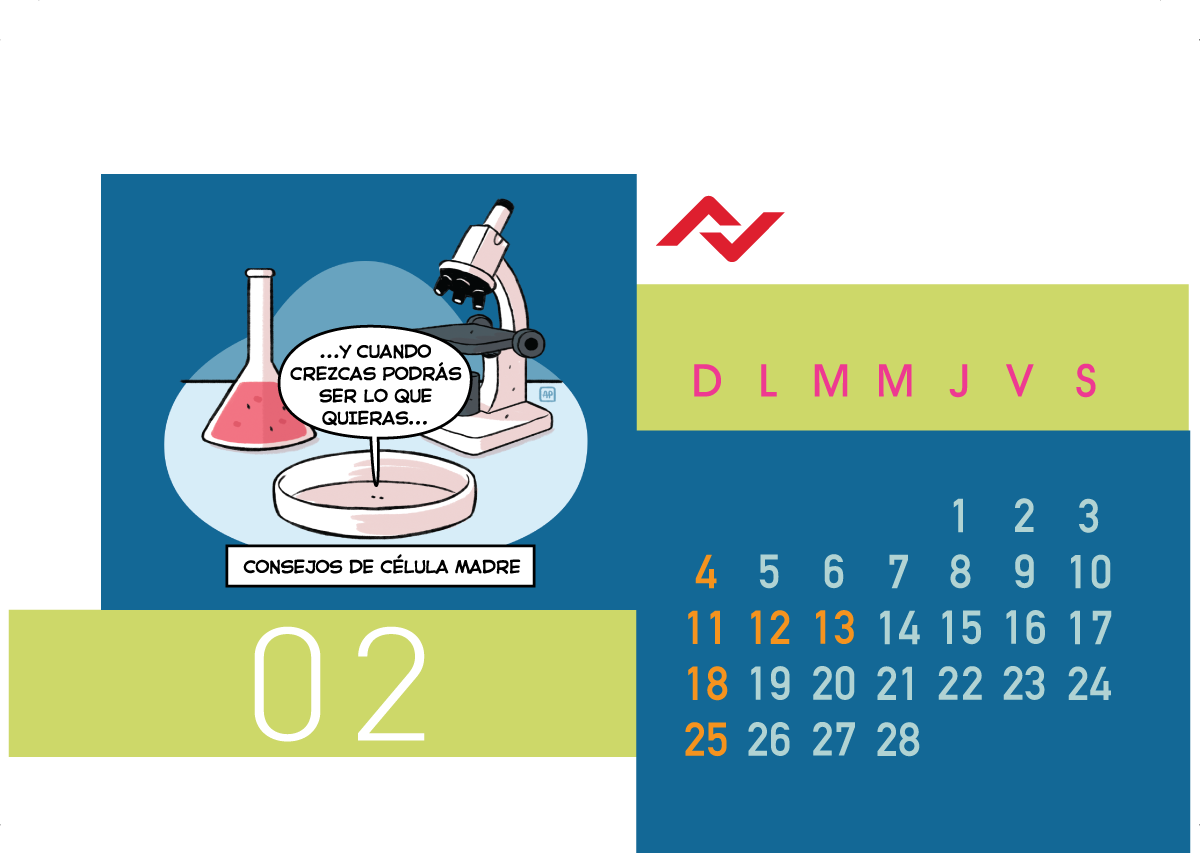 Calendario Jenck - Febrero 2018